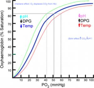 Oxyhaemoglobin_dissociation_curve